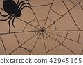 蜘蛛網 蜘蛛 秋天 42945165