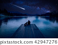 Man with dog looking at Perseid Meteor Shower  42947276