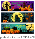 Halloween night party banner with spooky house 42954520