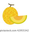 Healthy organic Cantaloupe melon 42955342