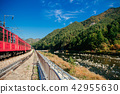 V-Train sightseeing train run along stream, Korea 42955630