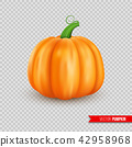 pumpkin, realistic, vegetable 42958968