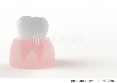 背部牙齒和牙齦CG的插圖 42961790