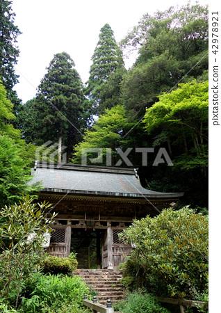 일본 교토 밍 원 야마토 Japan Kyoto Shimyoin 42978921