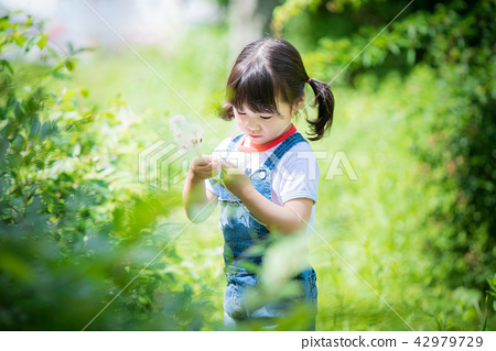 孩子 兒童的 小孩 42979729
