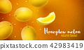 Honeydew melon sweet fruits flavour banner design 42983419