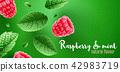 leaves raspberry fruit 42983719