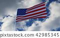 美国 美国人 旗帜 42985345