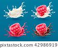 berries, milk, splashes 42986919