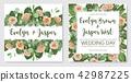 Set of vector illustrations of decorative vintage 42987225