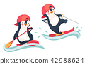 water skiing and SUP board 42988624