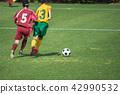 แนวนอนของเกมฟุตบอลหญิง 42990532