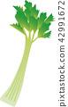 芹菜 蔬菜 食品 42991672