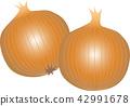 洋蔥 蔬菜 素食 42991678