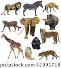 African animals set 42991718