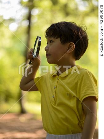 어린이 자연생태관찰! 숲속관찰! 42996078