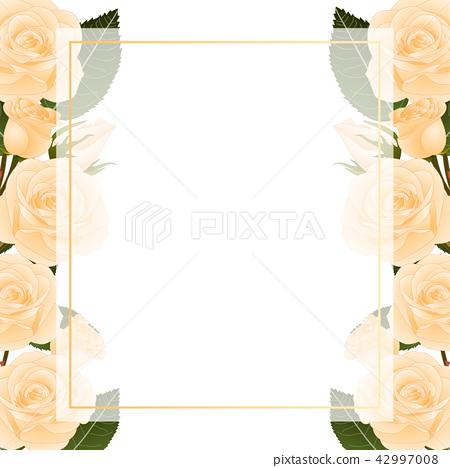 Orange Rose Banner Card Border 42997008