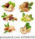 Different nuts realistic set 42998200