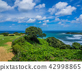 大高尔夫的出生地起源的地方,海风的山和鲑鱼 42998865