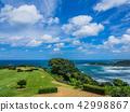 大高尔夫的出生地起源的地方,海风的山和鲑鱼 42998867