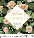 Vector wedding invitation template, greeting card 43003020