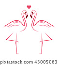 flamingo flamingos love 43005063