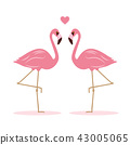 flamingo heart love 43005065