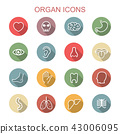 organ long shadow icons 43006095