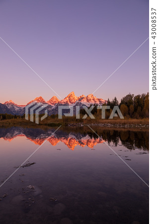 Scenic Sunrise Reflection in the Tetons 43008537
