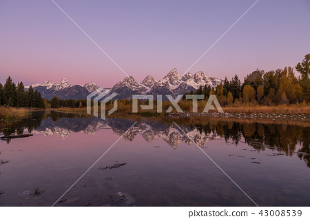 Scenic Sunrise Reflection in the Tetons 43008539