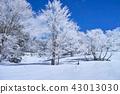 藏王的雲冰 43013030