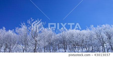 藏王的雲冰 43013037