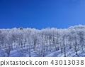 藏王的雲冰 43013038