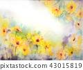 꽃, 플라워, 수채화 43015819