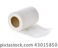 toilet paper isolated on white background 43015850