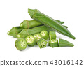 okra isolated on white background 43016142