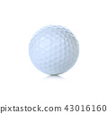 Golf isolated on white background 43016160