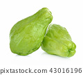 Chayote on white background 43016196