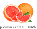 whole and slices red grapefruit with green leaves 43016697