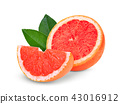 half and sliced grapefruit with green leaves  43016912