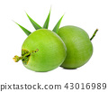 fresh green coconut with green leaf isolated  43016989