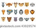 african animal face 43020574