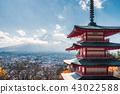 ฤดูใบไม้ร่วง,ภูเขาไฟฟูจิ,ฟูจิ 43022588