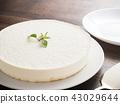 罕見的芝士蛋糕 43029644