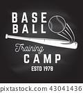 bat, baseball, ball 43041436