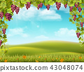 Grape arch and rural landscape red 43048074