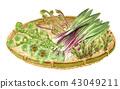 野菜设置 43049211