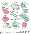 Set with hand drawn colorful doodle vegetables 43054222