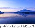 黎明富士山,在山梨縣的河口湖大石公園 43058526