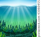 Vector illustration of Seaweed on the ocean floor 43060455
